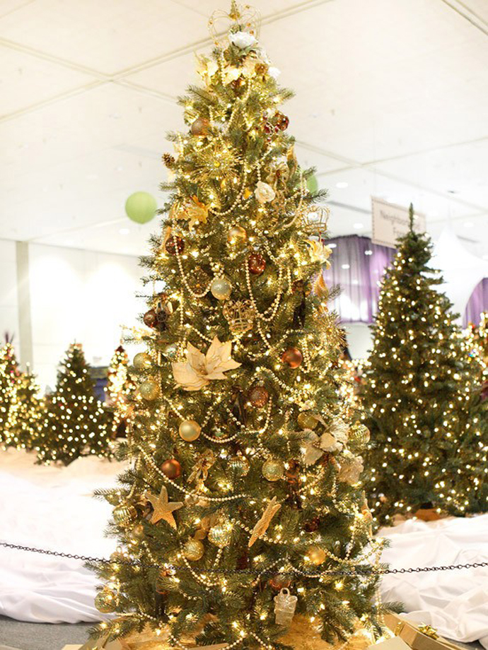 christmas-tree-002