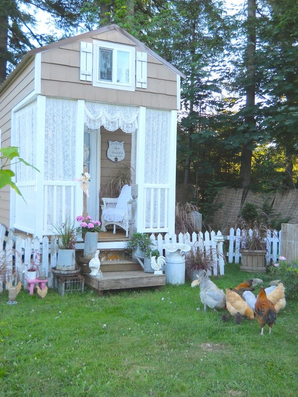 Shed with picket fence outside it, and chickens
