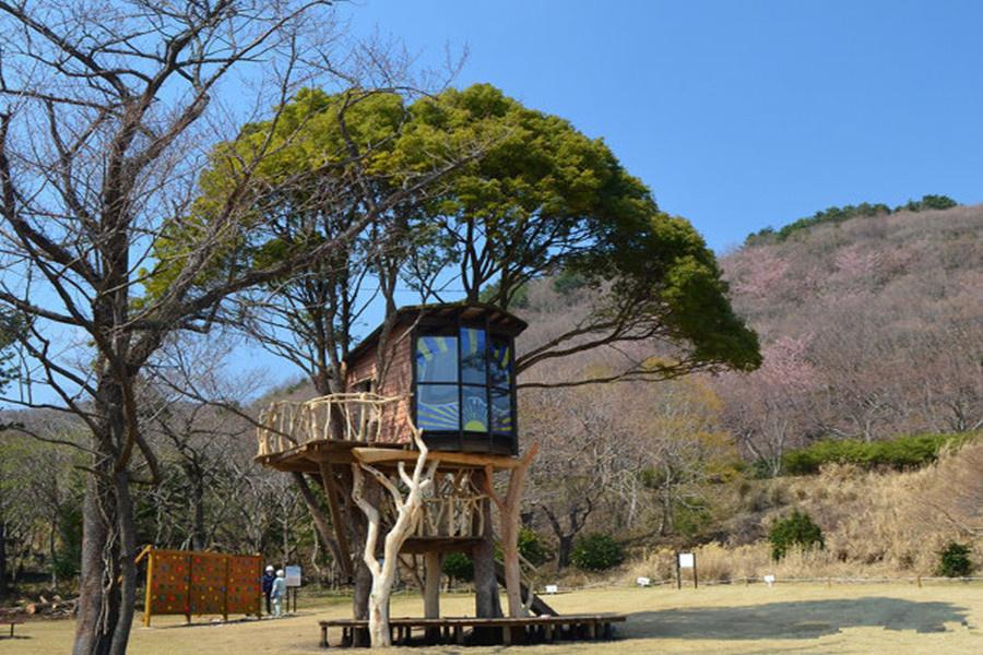 Takashi Kobayashi Tree House Design