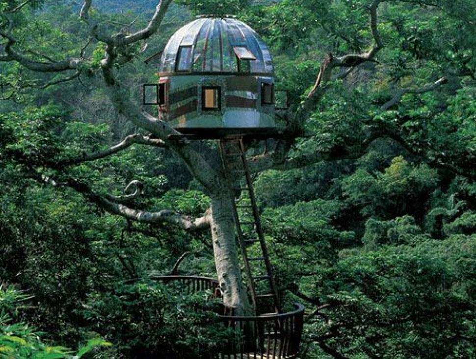 beach rock treehouse, japan