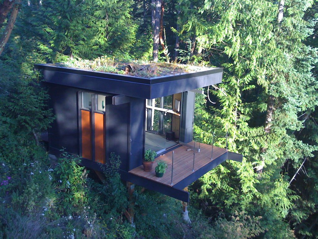 office treehouse